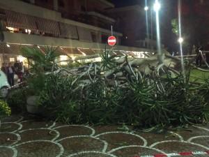 albero crollatoa sorrento