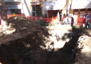 Lo scavo - Foto WWF