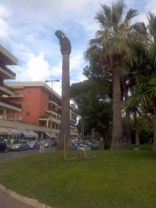 Palma a Piazza Lauro - Foto A. Cascone