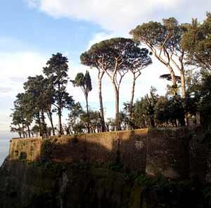 Villa Fondi: barriere dei lecci