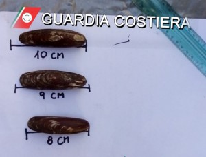 datteri-guardia-costiera