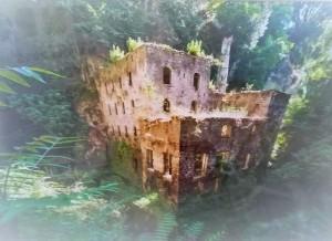 il-mulino-prima-del-restauro-in-una-foto-dautore-donata-dal-wwf-al-ministro-sergio-costa